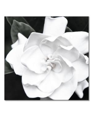 Canvastavla Gardenia