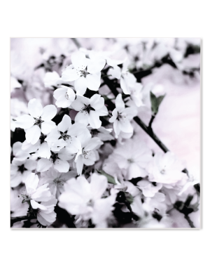"Canvastavla  ""Sakura"""